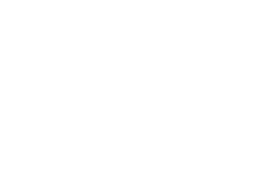 Logo Fonds de dotation Emerige